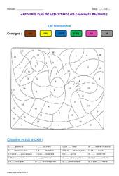 Homophones – Coloriage magique : 4eme Primaire