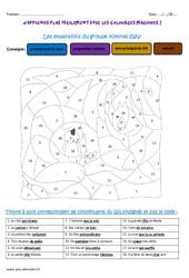 Expansions du groupe nominal GN – Coloriage magique : 4eme Primaire