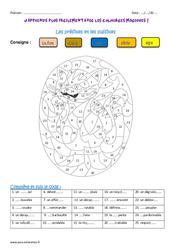 Préfixe – Suffixe – Coloriage magique : 4eme Primaire
