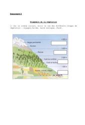 Etagement de la végétation – Exercices : 3eme, 4eme Primaire