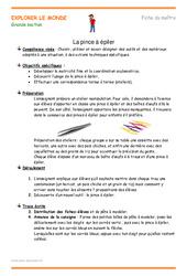 La pince à épiler – Plan de séquence : 3eme Maternelle – Cycle Fondamental
