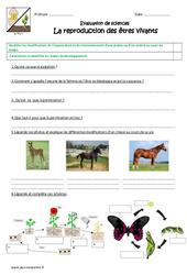 Reproduction des êtres vivants – Examen Evaluation : 4eme, 5eme Primaire