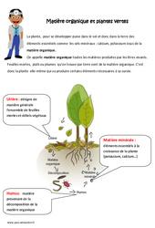 Matière organique et plantes vertes – Exercices : 4eme, 5eme Primaire