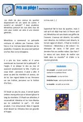 Pris au piège – Super chat contre Vilmatou – Exercices – Lecture – Récit : 3eme Primaire