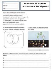 Croissance des végétaux – Examen Evaluation : 2eme Primaire