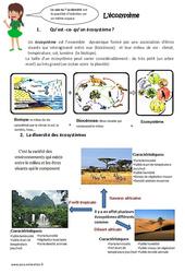 Ecosystème – Exercices : 4eme, 5eme Primaire