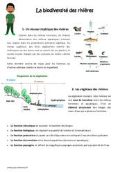 Biodiversité des rivières – Exercices : 4eme, 5eme Primaire