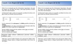 Etapes de la vie – Trace écrite – Temps – Cours, Leçon : 1ere Primaire
