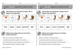 Adaptation des animaux à leur milieu – Exercices – Découverte du monde : 1ere Primaire