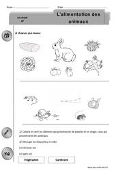 Alimentation des animaux – Exercices – Découverte du monde : 1ere Primaire