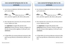 Caractéristiques de la vie animale – Trace écrite – Découverte du monde – Cours, Leçon : 1ere Primaire