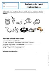 Alimentation – Examen Evaluation : 1ere Primaire