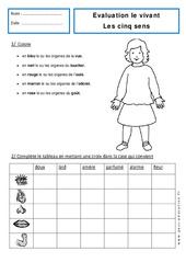 5 sens – Examen Evaluation : 1ere Primaire