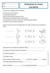 Dents – Examen Evaluation : 1ere Primaire
