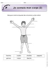 Je connais mon corps – Exercices 2 – Découverte du monde : 1ere Primaire