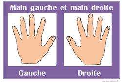 Main gauche – Main droite – Affichages pour la classe : 1ere, 2eme, 3eme Maternelle – Cycle Fondamental