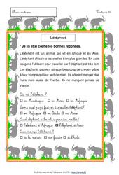Eléphant – Lecture compréhension – Français : 1ere, 2eme Primaire