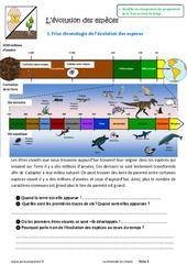 Evolution des espèces – Exercices : 6eme Primaire