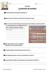 La fonction de nutrition – Examen Evaluation – Bilan : 6eme Primaire