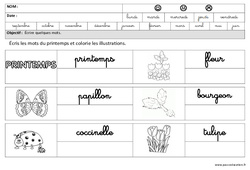 Printemps – Ecrire des mots en cursive : 3eme Maternelle – Cycle Fondamental