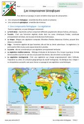 Composantes biologiques – Exercices : 6eme Primaire