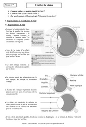 Œil – Vision – Cours – Physique – Chimie : 2eme Secondaire