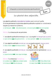 Orthographier correctement le pluriel des adjectifs qualificatifs. - CM1 - Leçon