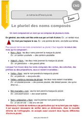 Je maîtrise les différents pluriels - CM2 - Leçon