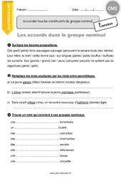 Les accords dans le groupe nominal – CM1 – Exercices à imprimer