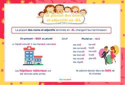Le pluriel des noms et adjectifs en -al- Affiche de classe