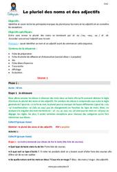 Le pluriel des noms et des adjectifs - CM2 - Fiche de préparation