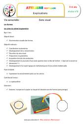 Cartes du cabinet de géométrie – Vie sensorielle – Montessori – Atelier 8