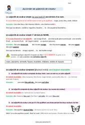 Accorder les adjectifs de couleur – CM2 – Leçon