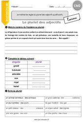 Pluriel des adjectifs - CM2 - Exercices avec correction