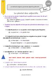 Pluriel des adjectifs – CM2 – Leçon