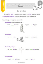 Préfixe – CE2 – Leçon