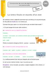 Lettre finale et muette d'un mot – Leçon – CM1