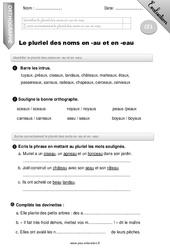 Pluriel des noms en -au et en -eau – CE1 – Evaluation – Bilan