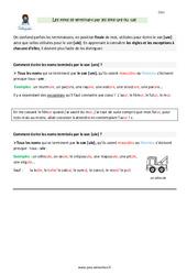 Noms terminés par les sons -ure et -ule – CM1 – Leçon
