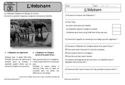 L'éléphant – Ce1 – Lecture documentaire – Cycle 2