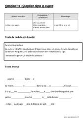 Surprise dans la classe – Ce1 – Dictée préparée – Semaine 11