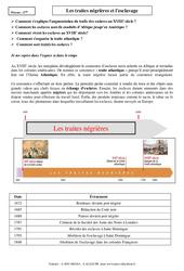 Traites négrières et l'esclavage - 4ème - Cours - Histoire