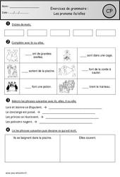 Révisions – Pronoms ils-elles – Cp – Grammaire – Cycle 2