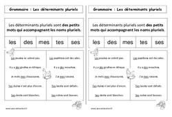 Déterminants pluriels – Cp – Leçon