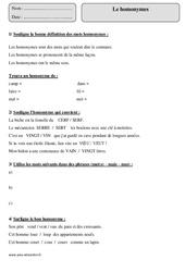 Homonymes – Cm1 – Exercices avec correction
