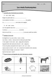Mots homonymes - Cm1 - Exercices corrigés
