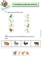 Connaître les petits des animaux - MS - GS - Le vivant