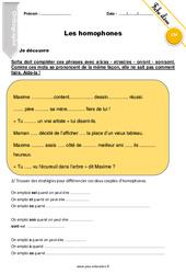 Homophones – Cm2 – Exercices à imprimer