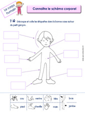 Connaitre le schéma corporel - MS - GS - Le corps humain