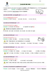 Pluriel des noms - Cm1 - Leçon